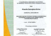 terapia integracji sensorycznej_1 stopień