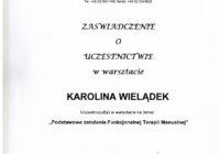 warsztat_funkcjonalna terapia manualna